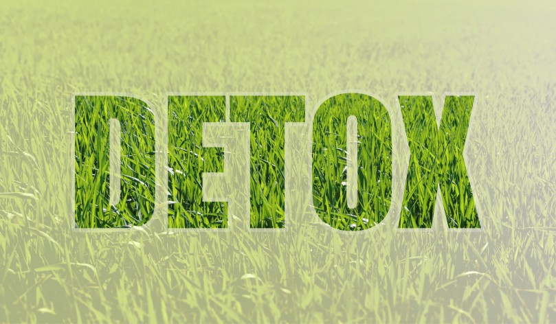 Detox Grass Green